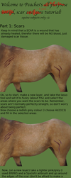 Equine Scar Tutorial by peachesrox