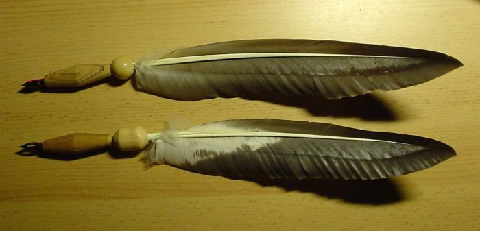Feather Quills 2 by xena2001de