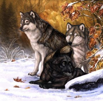 Winter Wolves by AnsticeWolf