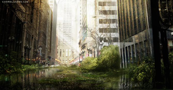 Last of Us by Aeflus