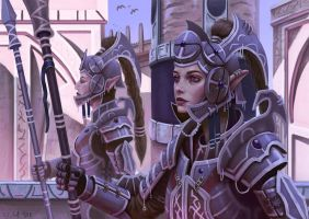 Royal Elven Guards by Samo94