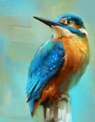 Kingfisher 3 by Fievy