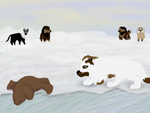 Seal Formation..Go! by magikwolf