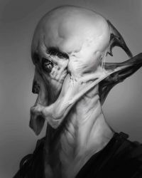 Fifty Shades of Terrifying  by Robotpencil
