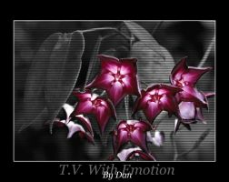 T.V. With Emotion by AlienDan