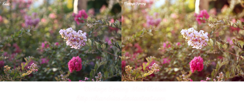 Vintage Spring Mini Action by liandries