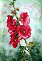 Watercolor flowers by Mumium
