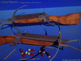 Coachman Combination Carbine by octopus7