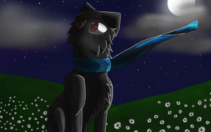 Starry night (CO) by Hollyshade09