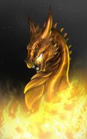 Of Fire by dizturbed