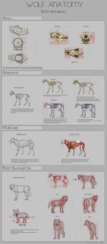 Wolf Anatomy - Part 1 by Autlaw