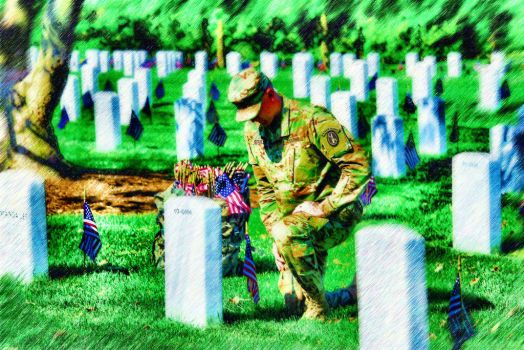 Remember the fallen by peterpicture