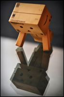 Danbo: Hello.. Friends? by AliceLeah-Roth