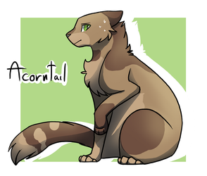 Acorntail - Warrior cats by CreativeCheetah