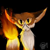 Elemental Fox by zencat61