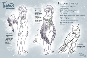 How to Create a Falcon Fury by TetheredManga