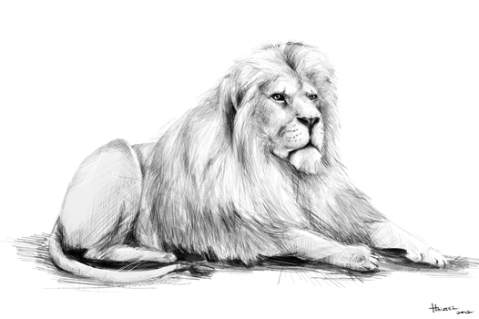 Lion at Peace by Haizeel