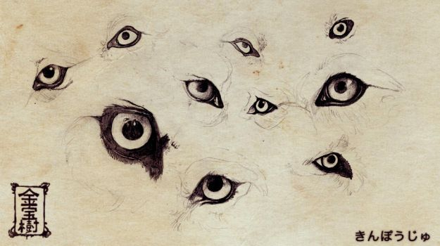 Wolfeye explore wolfeye on deviantart thetyro 927 65 wolf eyes ref1 by valhalrion ccuart Image collections
