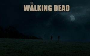 The Walking Dead - Rick and Shane by ciccio91gow