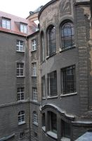 backside of coll. maius