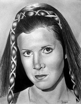 Princess Leia by Mutemouia