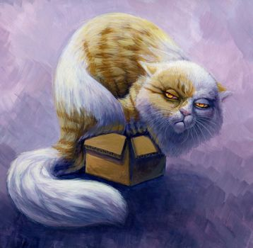 I WILL fit in this box by hibbary