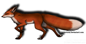 It's a Fox by ToothyGrins