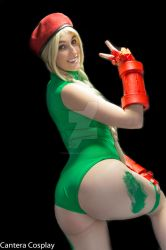 Micro Kitty Cammy 13 by CanteraImage