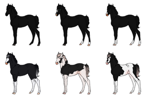 Black Foals - Sold by Miss-Adopts