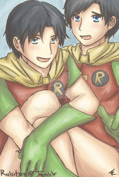 Two Robins by Ruby-Heart