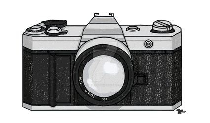 Camera Commission by SheilaSunshine