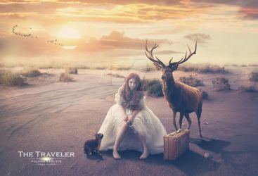 The Traveler by wasaps00