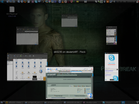 Ring Switcher Compiz Fusion by dA5235