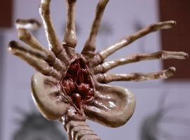 Alien Facehugger by FUVL