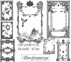 Ornamental Frames set 3 by Lileya