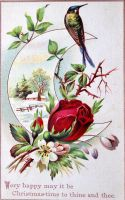 Victorian Christmas Card - Rose and Hummingbird by Yesterdays-Paper
