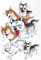 GNG Wolves by jawazcript