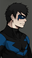 NIGHTWING by khakki