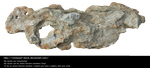 Funny Stone By Cindysart-stock by CindysArt-Stock