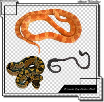 Premade Png Snakes Pack by Lady-Valentine-Art83