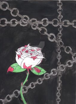 The White Rose of Life and Death by ScarletCB1999