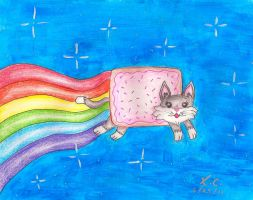 Nyan Cat by Spongefifi