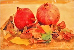 Autumn  fruits by ShlomitMessica