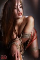 tied, nude asian girl - Fine Art of Bondage by Model-Space