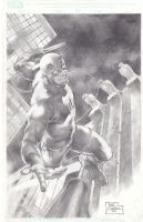 Daredevil by wolfpact