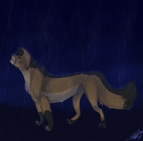 Tell me what the Rain knows by DRGNFL