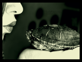 The Turtle Prince by wiccashome
