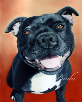 Staffordshire Bull Terrier pastel painting by skippypoof