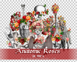 Anatomic Roses PNGs by Bellacrix