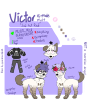 .: Victor Ref 2016  :. by waterparkss